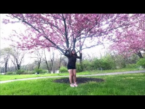 【Momo Aria (Yaci)】MOMOLAND(모모랜드): I'm So Hot DANCE COVER