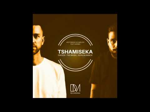 Kid Fonque & D-Malice feat. Khensy - Tshamiseka (Dwson Remix) (2018) Mp3