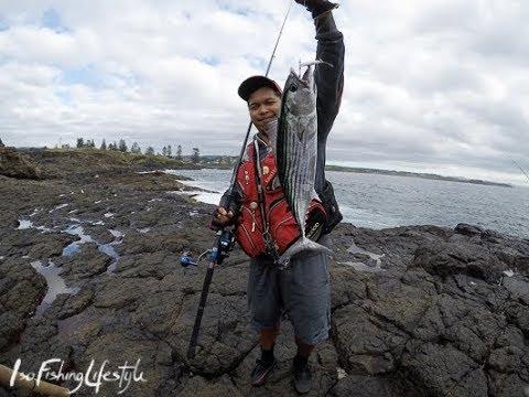 IFL TV HL EP8: Shore Jigging Australia For Bonito
