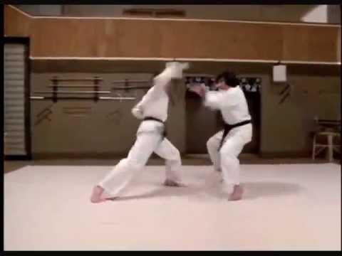 Revenge of The Ninja: Sho Kosugi vs Keith Vitale