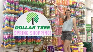 Drama at The Dollar Tree! Spring Shop With Me!  All the New Spring + Easter Decor at DT!