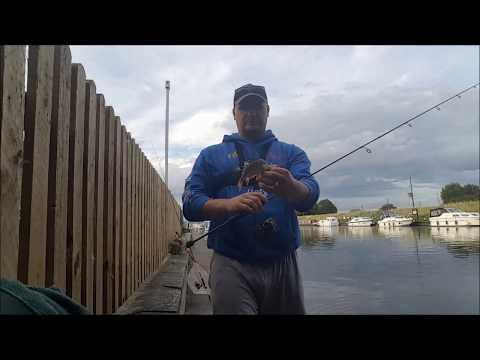Perch fishing in Norfolk
