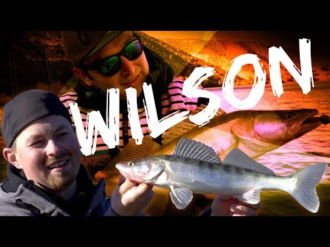 Wer ist eigentlich Wilson? | Vertikal auf Zander | www.zeck-fishing.com