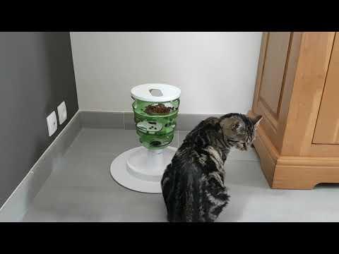 Distributeur De Croquettes Catit Senses 2.0 Pour Chat