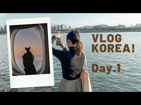 ✈️ Vlog Korea ep.1 เที่ยวโซลครั้งเเรก 🧳นอนโรงแรมทำเลดีห่างสถานีเมียงดงแค่ 100 m.