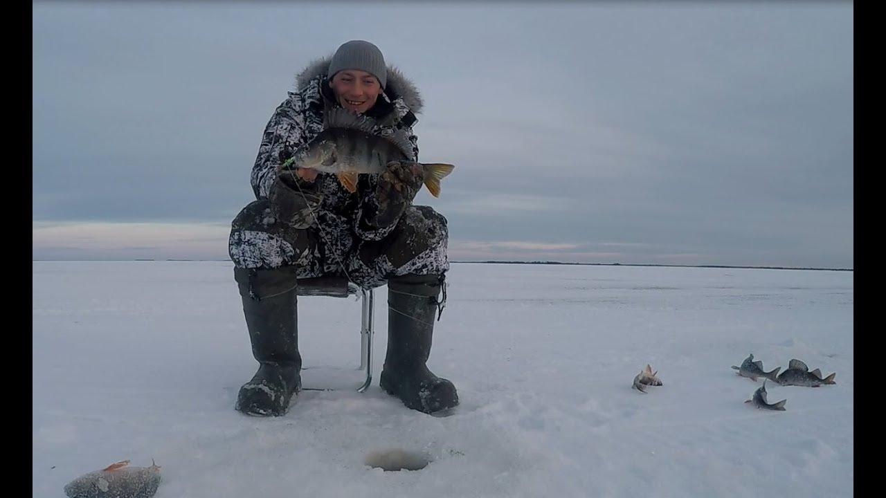 озеро виви зимняя рыбалка фото