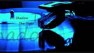 DJ Shadow ~ The Tiger