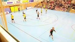 3. Liga Re-Live: TSV Altenholz - HSG Ostsee I Die Aufzeichnung I 21.12.2018