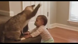 Baby and Cat Fun and Fails, Funny Baby with Animals Video