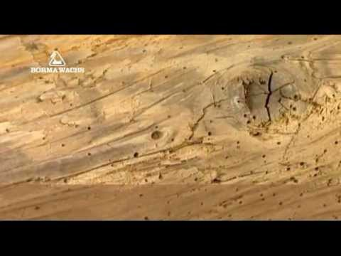 Воск для дерева: виды, характеристики, популярные составы