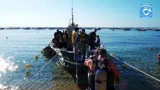 Poseidon Diving Center - Calella de Palafrugell