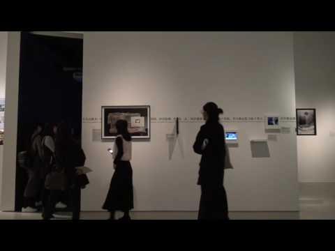 Mr.Quan_Installation view in 11th Shanghai Biennale_Ma Haijiao_2016