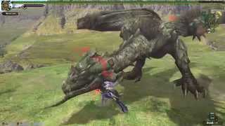 monster hunter frontier G - Rathian (tonfa)