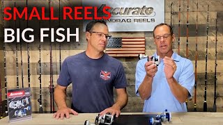 Small Reels BIG FISH | ACCURATE FISHING
