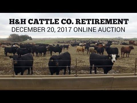H&H Cattle Company Retirement Auction