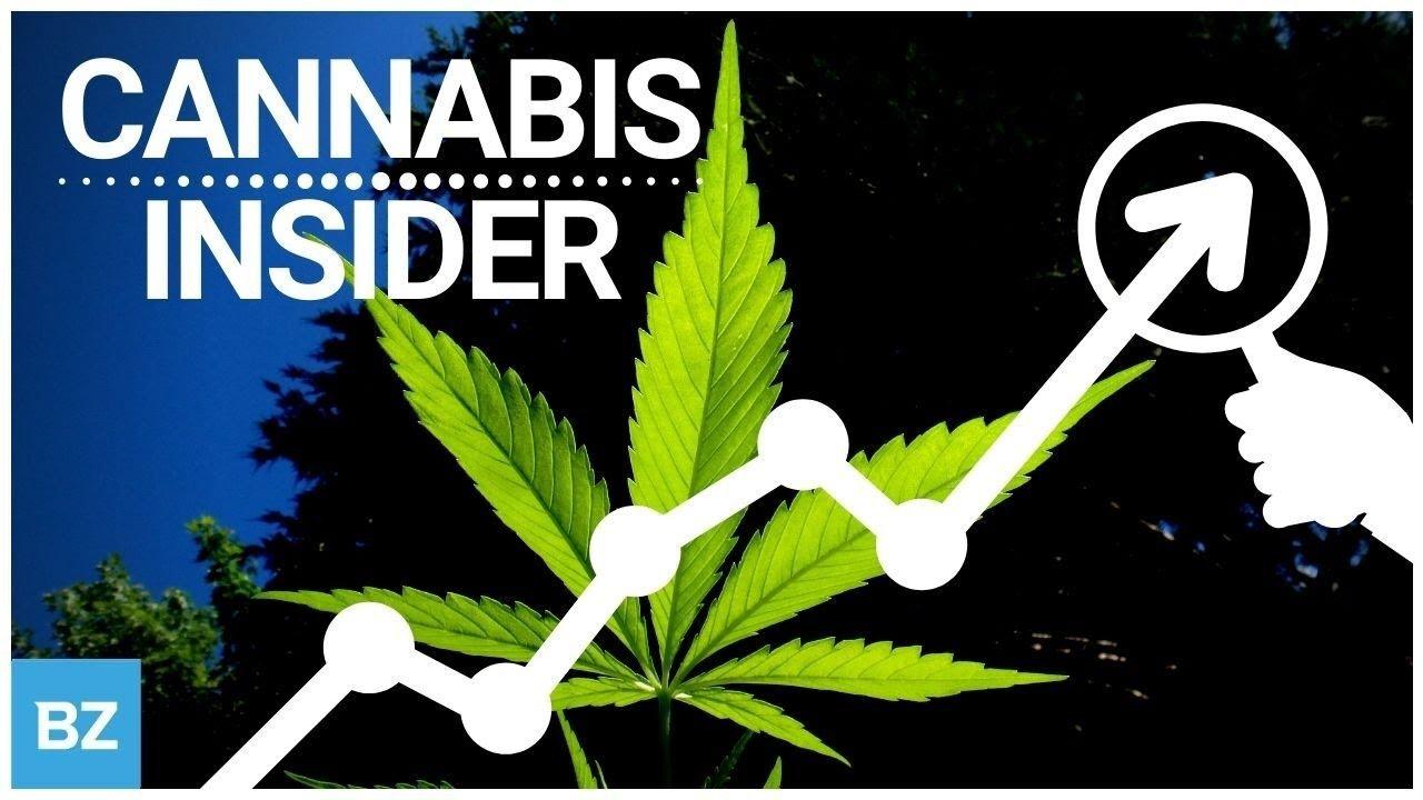 Cannabis Sales Booming Going Into Q4   Benzinga Cannabis Insider   Stock Market LIVE 🔴
