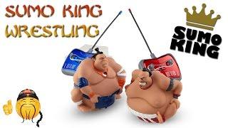 Sumo King Wrestling Game