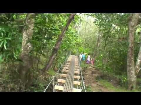 Swinging bridges hike maui