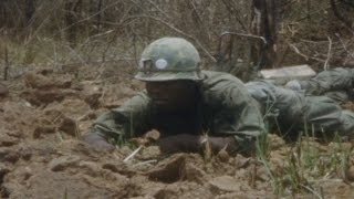 Charlie Company is Bloodied and Trapped in the Jungle of Vietnam