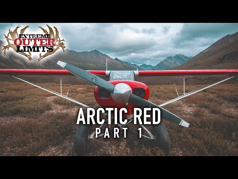 Sheep, Caribou And Moose Hunting In The NWT - Arctic Red Part 1