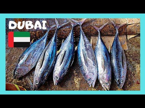 DUBAI: The Amazing Deira Fish Market 🐟🦈 (United Arab Emirates) - Let's Go!