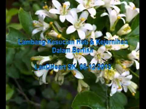 Bunga Kemuning - Tetty Kadi