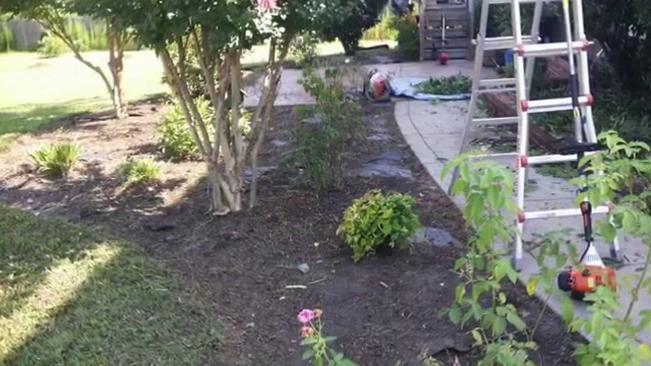 landscape cleanup mulch installation shrub and tree trimming