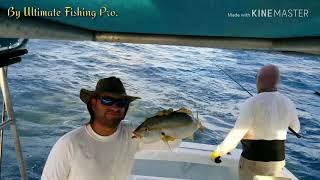 """""""Pro Yellowtail Fishing 2018"""""""