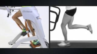 ZR8 vs Treadmill