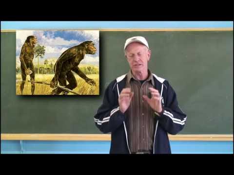 Video aula de História: A Origem do Homem