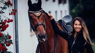 In The End || Equestrian Motivation