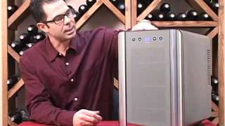 6 Bottle Wine Refrigerator From Wine Enthusiast