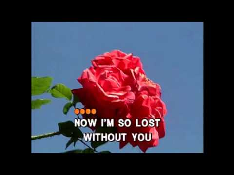 Lonely Is the Night - Air Supply (Karaoke Cover)