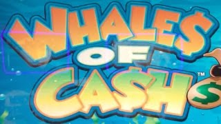 WHALES OF CASH w/ DUCK$ IN A ROW & TWIN WIN ✦ LIVE PLAY ✦ Slot Machine Pokie at San Manuel, SoCal