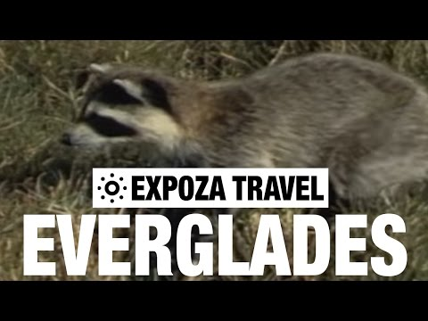 Everglades National Park Travel South Florida USA Video Guide