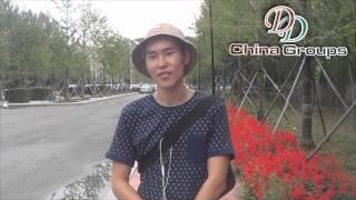 Отзыв студента Шеньянского политехнического университета (языковые курсы, 2015)