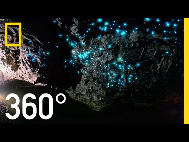 Glow Worm Caves of New Zealand in 360° | National Geographic