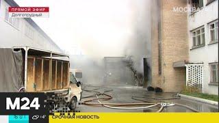 Площадь пожара на складе в Подмосковье составляет 600 квадратных метров - Москва 24