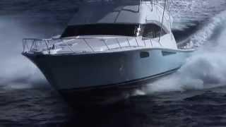 Bertram 54 - Art Marine