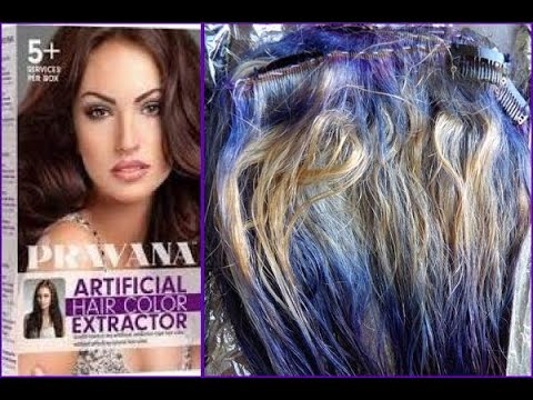 pravana artificial hair color extractor instructions