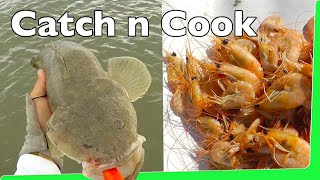 Catch n Cook 🔥 Prawns 🍤 with Flathead Fishing Shrimp in USA EP.352
