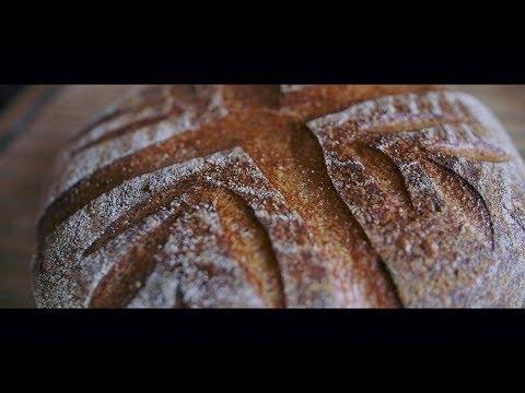 IT'S ALIVE: Baking Sourdough Bread FCFC S2E1