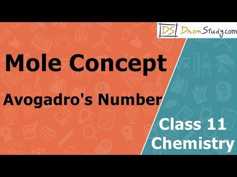Mole Concept - Avogadro's No | Class 11 XI Chemistry | CBSE | IIT-JEE | AIPMT