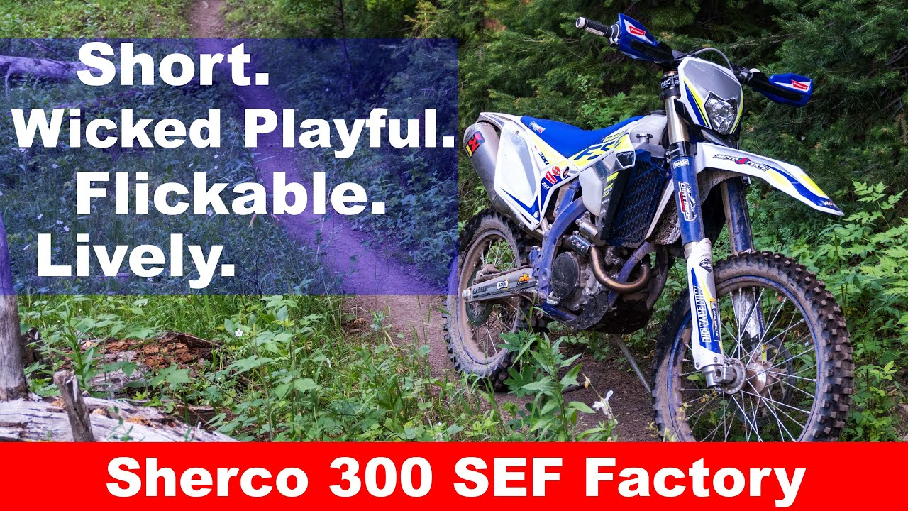 We've got a Lively one!  2020 Sherco 300 SEF Factory