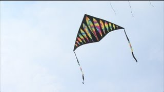 Learn How to Play Kite - Game Rules and Guide