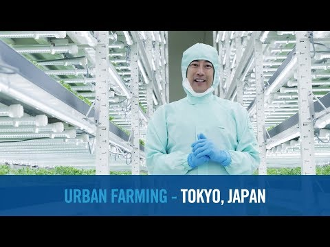 Shaping Smarter Cities – Tokyo, Japan