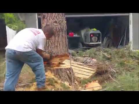 Woodland Hills Construction Remodel Timelapse Renovation Job # 6,012 Part # 2 by Shafran 2015