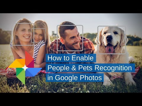 Google Photos   How To Enable People & Pets Recognition
