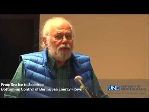 From Sea Ice to Seabirds: Bottom-up Control of Bering Sea Energy Flows