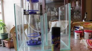 [08] Biocube Custom Sump-refugium